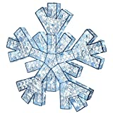 "National Tree Company 36"" Crystal Bead Snowflake with LED Lights, Green"