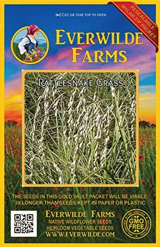 Everwilde Farms - 1000 Rattlesnake Grass Native Grass Seeds - Gold Vault Jumbo Seed Packet