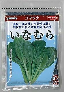 サカタのタネ 野菜の種 小松菜 いなむら 2dl