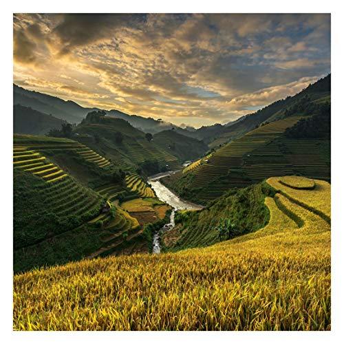 Tapete selbstklebend - Reisplantagen in Vietnam Fototapete Quadrat 192x192 cm
