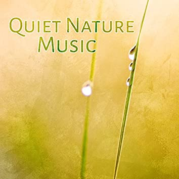 Quiet Nature Music – Peaceful Sounds of Nature, Deeper Relax, Spa, Massage