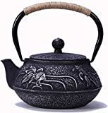 Tetera de hierro fundido con infusor para té suelto, con interior esmaltado para la salud, 900 ml