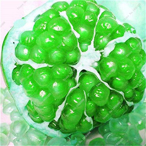 Grenade rare géant Graine Japon Bonsai savoureux fruits bio Heirloom non Ogm Multi Color Fruit Graine Arbre à feuilles persistantes 30 Pcs/Lot 3
