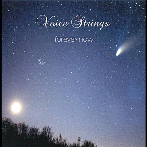 VoiceStrings