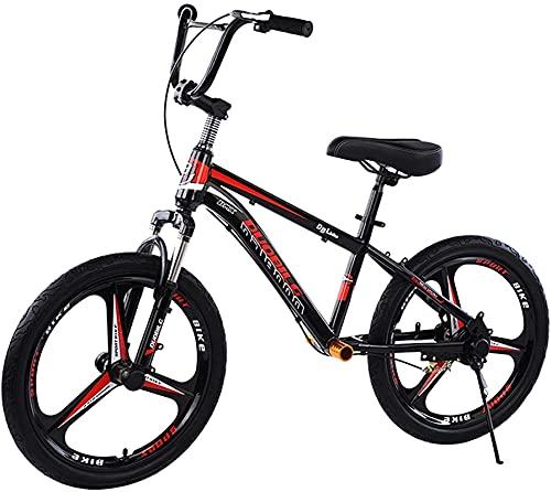 YQCH Entrenador Big Kids Balance Bike, Adultos/Adolescentes/papá/mamá Sin Pedal Bicicleta con Frenos de Disco, Rueda 16in / 18in / 20in, Cargas 100kg / 220lbs (Color : 18inch)