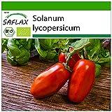 SAFLAX - BIO - Pomodoro - San Marzano - 15 semi - Solanum lycopersicum