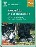 Akupunktur in der Tiermedizin: Lehrbuch und Atlas für die Klein- und Großtierbehandlung - mit Zugang zum Elsevier-Portal - Allen M. Schoen