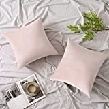 Woaboy Pack of 2 Velvet Throw Pillow Covers Decorative Pillowcases Solid Soft Cushion Covers Pillow Case Square Modern for Couch Living Room Sofa Bedroom Car 18x18 inch 45x45cm Pink