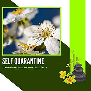 Self Quarantine - Soothing Detoxification Melodies, Vol. 6