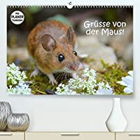 Gruesse von der Maus! (Premium, hochwertiger DIN A2 Wandkalender 2022, Kunstdruck in Hochglanz): Zauberhafte Bilder einer kleinen Maus! (Geburtstagskalender, 14 Seiten )