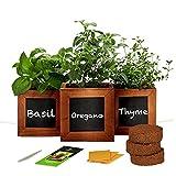 Indoor Herb Garden Kit with Wooden Herb Planters,...