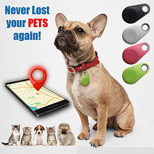 ZOOARTS 2019 Pets GPS Tracker and Activity Monitor GPS Anti-Lost Waterproof-for Best Pets Gifts (Black)