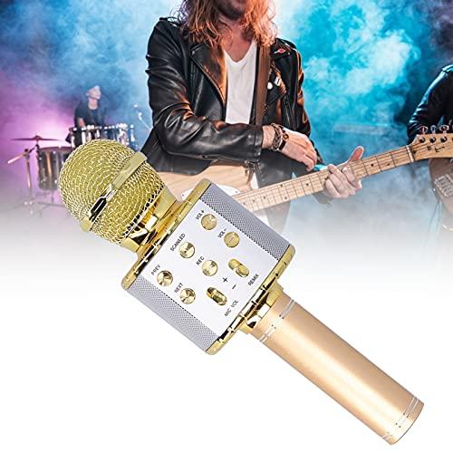 Micrófono inalámbrico, función de cambio de sonido de micrófono de karaoke Luces LED activadas por voz para rendimiento