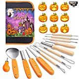 Halloween Pumpkin Carving Tools Kit, 13 Piece Professional Professional Pumpkin Cutting Supplies Tools Kit Stainless Steel Lengthening and Thickening for Halloween Decoration jack-o-lanterns