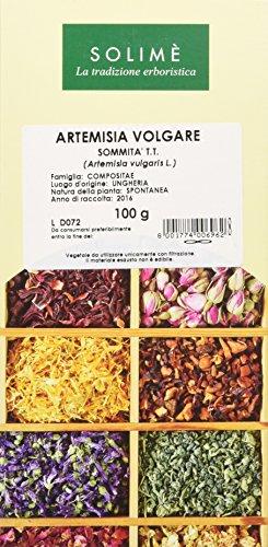 Artemisia Volgare Sommità Taglio Tisana - 100 g -...