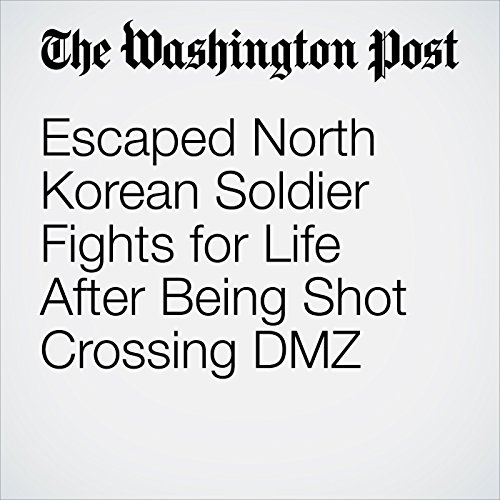 Escaped North Korean Soldier Fights for Life After Being Shot Crossing DMZ copertina