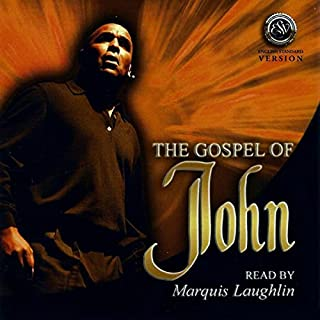 John's Gospel (English Standard Version) audiobook cover art