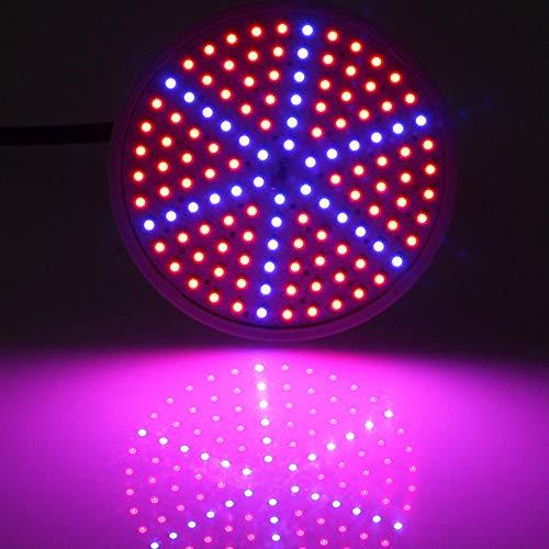 XZYP Pflanzenlampe, 8W 126 LED Wachsen Licht Full Spectrum Für Zimmerpflanzen Gemüse Und Blumen, Führte Pflanze Wachsen Leuchten Mit Daisy Chain Functio