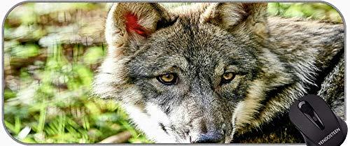 Almohadilla de ratón de Juego con Bordes cosidos, depredador Wolf Snow Gaming Mat