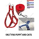 The DDS Store Nylon Reflective Dog Harness Leash Lead Set Only for Puppy and Cats (Voilet)