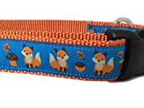Autumn Dog Collar, Caninedesign, Fall, 1 inch Wide, Adjustable, Nylon, Medium and Large (Fox, Large 15-22')