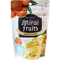 (セット販売)※ミライフルーツ みかん 10g×4個セット