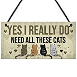 RED OCEAN Really Do Need All These Cats Sign Home Funny Crazy Cat Lady Sign Pet Lover Gift