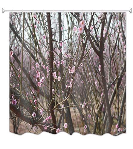 A.Monamour Duschvorhänge Frühling Pflaume Kirsche Blume Baum Rosa Blüten Im Freien Park Garten Natur Landschaft Fotografie Wasserdicht Mehltau Resistent Polyester Stoff Duschvorhang 165X180 cm