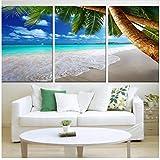 Zhaoyangeng Lienzo de playa de Isla Tropical Impresión de Coco, Palmera, Lienzo para Home Theater Dormitorio, Decoración de Pared Arte de Paisaje Marino 50X70Cmx3 Sin Marco