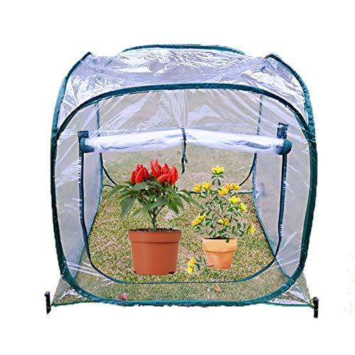 Gzhenh Invernadero,Plegable Invernadero Emergente con Cremallera Transparente Impermeable Usado para Planta Carpa De Invierno (Color : 1pcs, Size : 98x98x98cm)