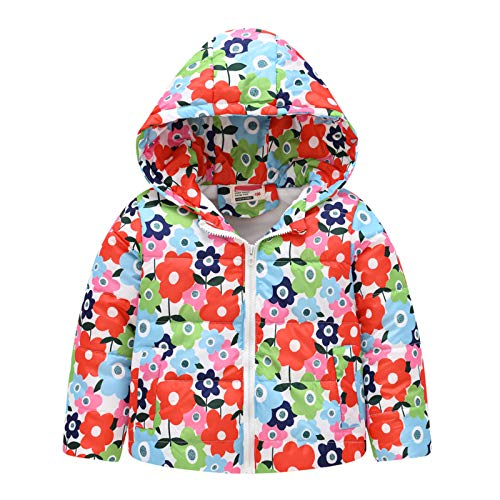 Boys' Toddler Zip-up Hoodies Fall Winter Warm Coat Clothes Girls' Hooded Jacket Kids Long Sleeve Outerwear Windproof