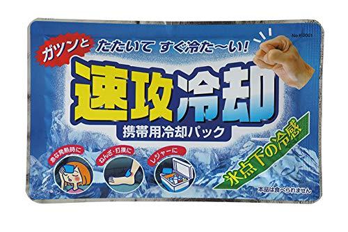 紀陽除虫菊 速攻冷却携帯用 冷却パック (10個入) 保冷ジェル アイシング
