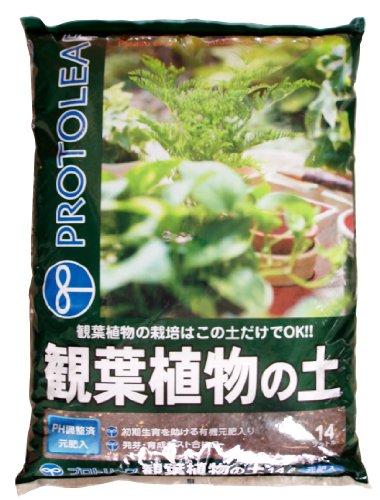 プロトリーフ 観葉植物の土 14L
