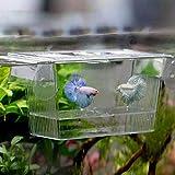 Tanque de Peces Caja de aislamiento de cría de peces transparente Caja de aislamiento de acuario Cajas de incubación de acrílico multifuncional Soporte de tanque de peces Sala de Estar Pequeño Cuenco