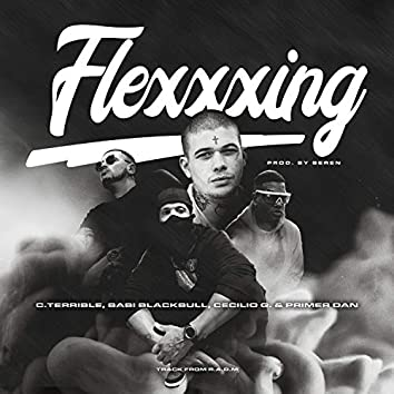 Flexxxing (feat. Primer Dan)