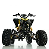Kinder Quad ATV 125 ccm schwarz - 3