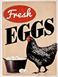 Kühlschrank Magnet 6x8 cm ' Fresh Eggs ' Retro Nostalgie Tin Sign EMAG273