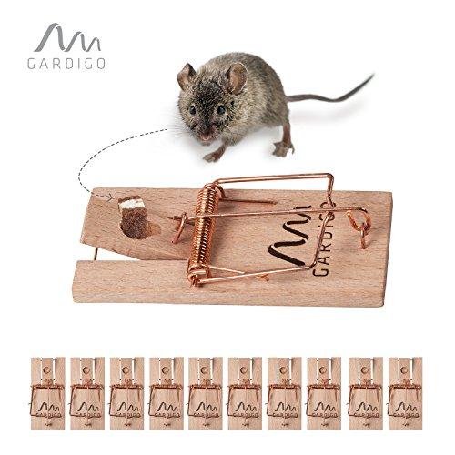 Gardigo Mausefallen Set - 10 Stück I Schlagfalle für Haus und Garten I Holz-Mausefalle, Wiederverwendbar, Umweltfreundlich, einfach Aufzustellen
