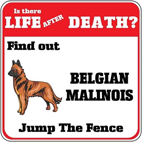 Schild, Motiv: Belgischer Malinois Dog Life After Death Jump Zaun Crossing, Aluminium, 30,5 x 30,5 cm