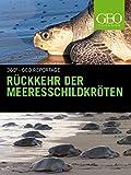 Rückkehr der Meeresschildkröten