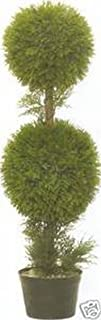 Best double ball topiary trees Reviews