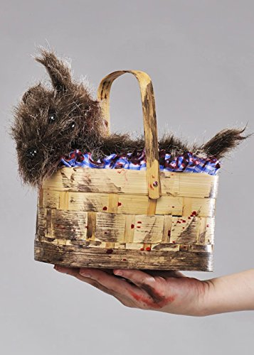 Magic Box Halloween Zombie Dorothy Toto Basket Bourse