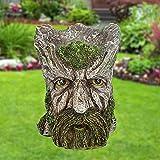 woyada Macetero de árbol con cara de hombre, maceta de resina decorativa de barba verde, maceta de flores de Treeman para planta de jardín (5,71 cm- 4,53 cm- 6,22 pulgadas)