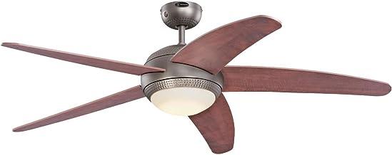 Amazon.es: repuestos de ventiladores de techo