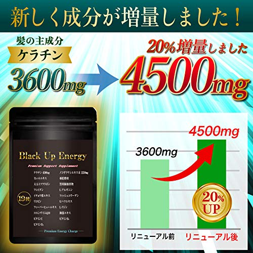 『Black Up Energy ノコギリヤシ ケラチン サプリメント 厳選19素材 30日分』の2枚目の画像