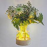 Gadgy Jarrones Decorativos Modernos | Floreros Cristal | Decoracion Mesa para Plantas y Flores | Lámpara Florero con Luz Led | 20,50 x 16 cm