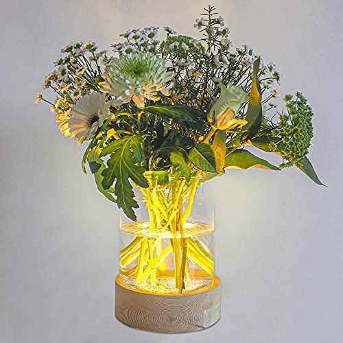 Gadgy Jarrones Decorativos Modernos | Floreros Cristal | Decoracion Mesa para Plantas y Flores | Lámpara Florero con Luz Led...