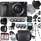 Sony Alpha a6000 (Black) E-Mount Mirrorless Camera with Sony E 16–50mm f/3.5–5.6 OSS Lens + Professional Accessory-Kit Bundle