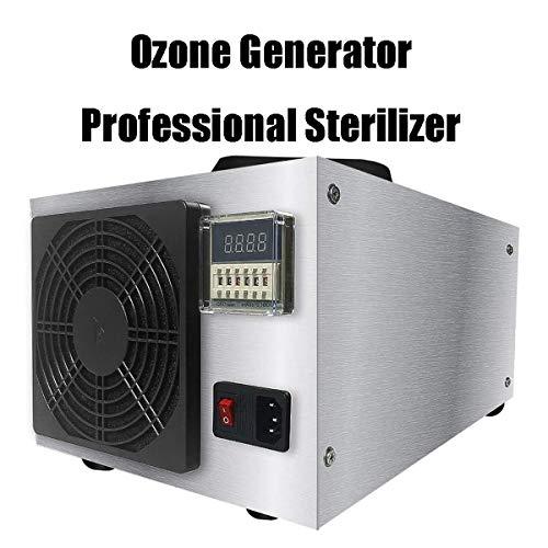 GXLO Generador de ozono, Esterilizador Profesional, Limpiador Comercial purificador de Aire, Comfort Acero Inoxidable Ozonador Profesional Desodorante y Esterilizador - 50g