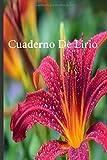 Cuaderno De Lirio: Lleve un registro de todas sus actividades con este cuaderno fácil de seguir.